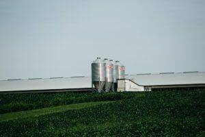 The exterior of a large pig barn next two four metal feed bins surrounded by tall green grass